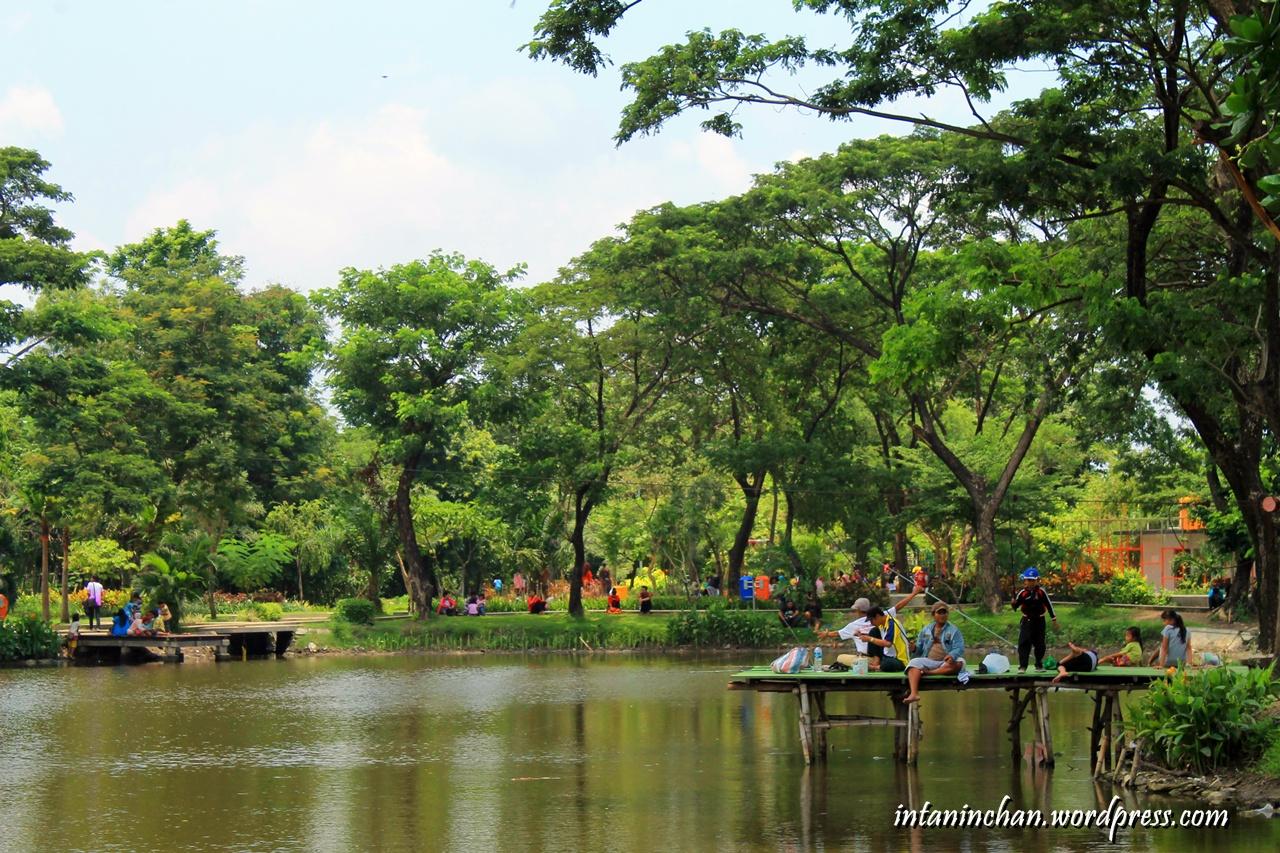 Wisata Taman Kota Surabaya Kebun Bibit Wonorejo World Img 0059