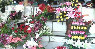 Bunga Surabaya Bisnis Pasar Bratang Kota