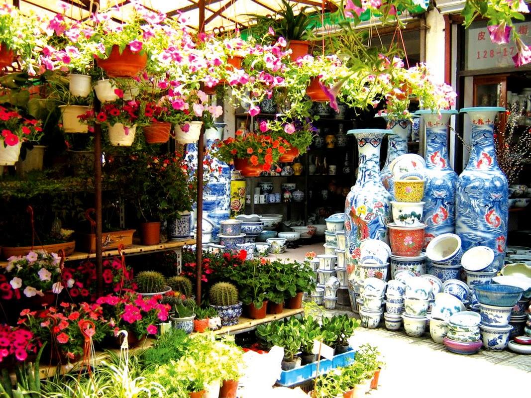 Destinasi Wisata Surabaya Pasar Bunga Brantang Tempat Menemukan Image Pariwisatasurabaya