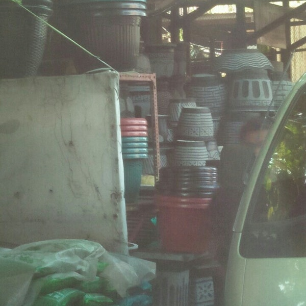 Foto Pasar Bunga Bratang Toko Diambil Oleh Mario 3 21