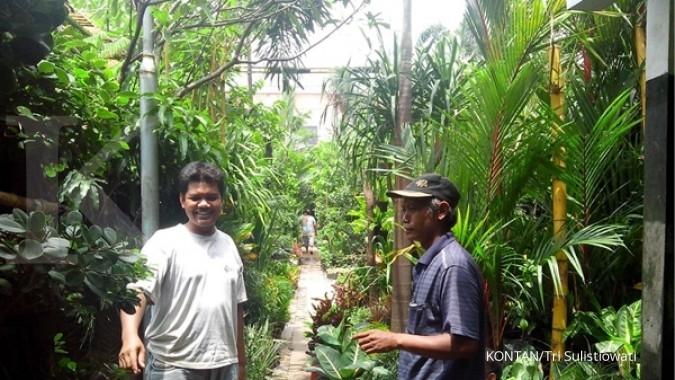 Memilih Tanaman Hias Pasar Bratang 1 Bunga Kota Surabaya