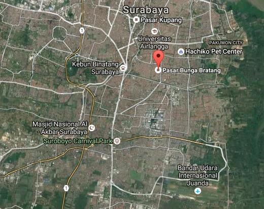 Pesona Keindahan Wisata Pasar Bunga Bratang Surabaya Daftar Demikianlah Sedikit
