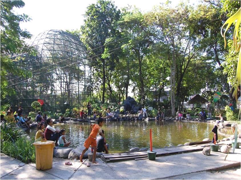 Kim Venus Taman Kota Surabaya Buah Jl Undaan