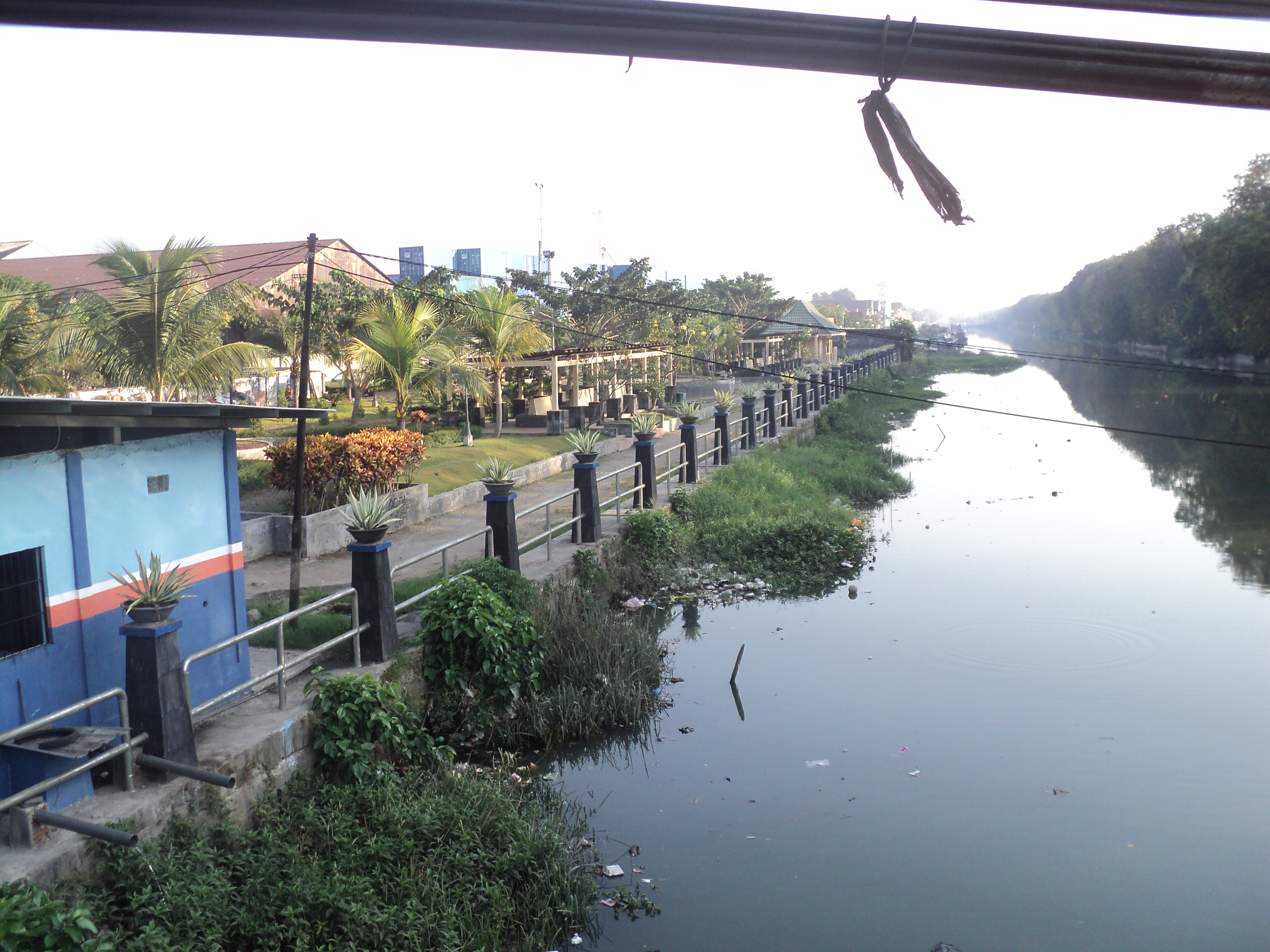 Taman Buah Buahan Pesona Kota Surabaya Petekan Undaan