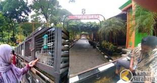 Taman Harmoni Keputih Wisata Bunga Sakura Surabaya Kabar Menikmati Wahana