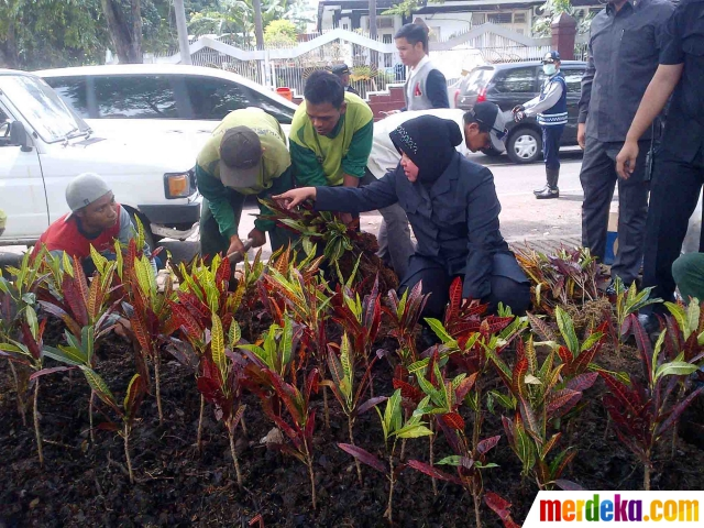 Foto Wali Kota Risma Tanam Bunga Taman Bungkul Merdeka Walikota