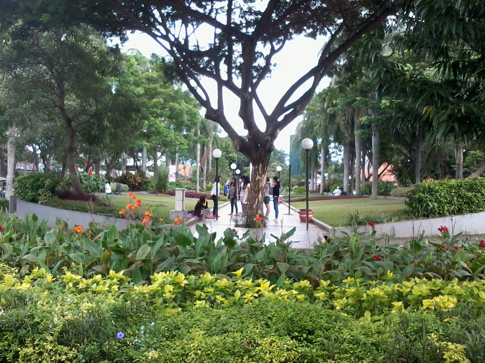 Intaps Reading Club Keindahan Korea Ala Surabaya Kota Taman Dr