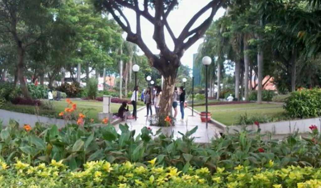 Menikmati Indahnya Taman Korea Cybertokoh Dr Soetomo Persahabatan Kota Surabaya