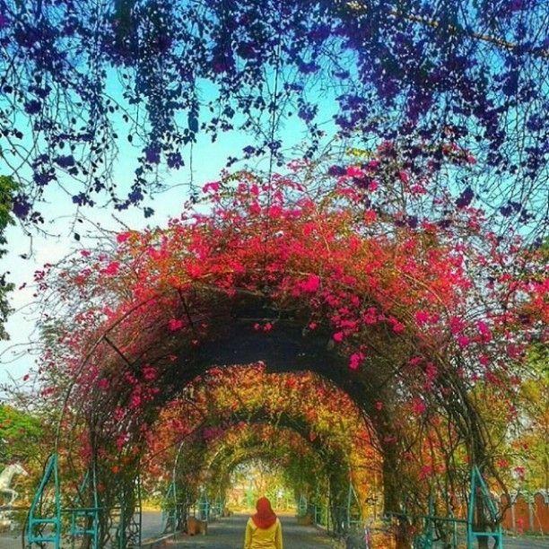 Foto Diambil Sama Salah Satu Indonesiaphotographers Keren Melatijaz Taman Ria
