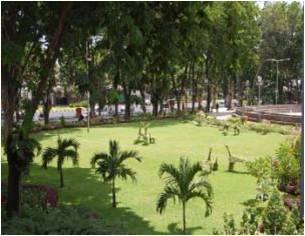Kim Venus Taman Kota Surabaya Mayangkara Wonokromo 16 Apsari Jl