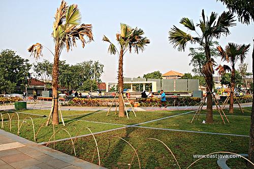 Mundu Park Recreational Citizens Taman Surabaya East Java Kota