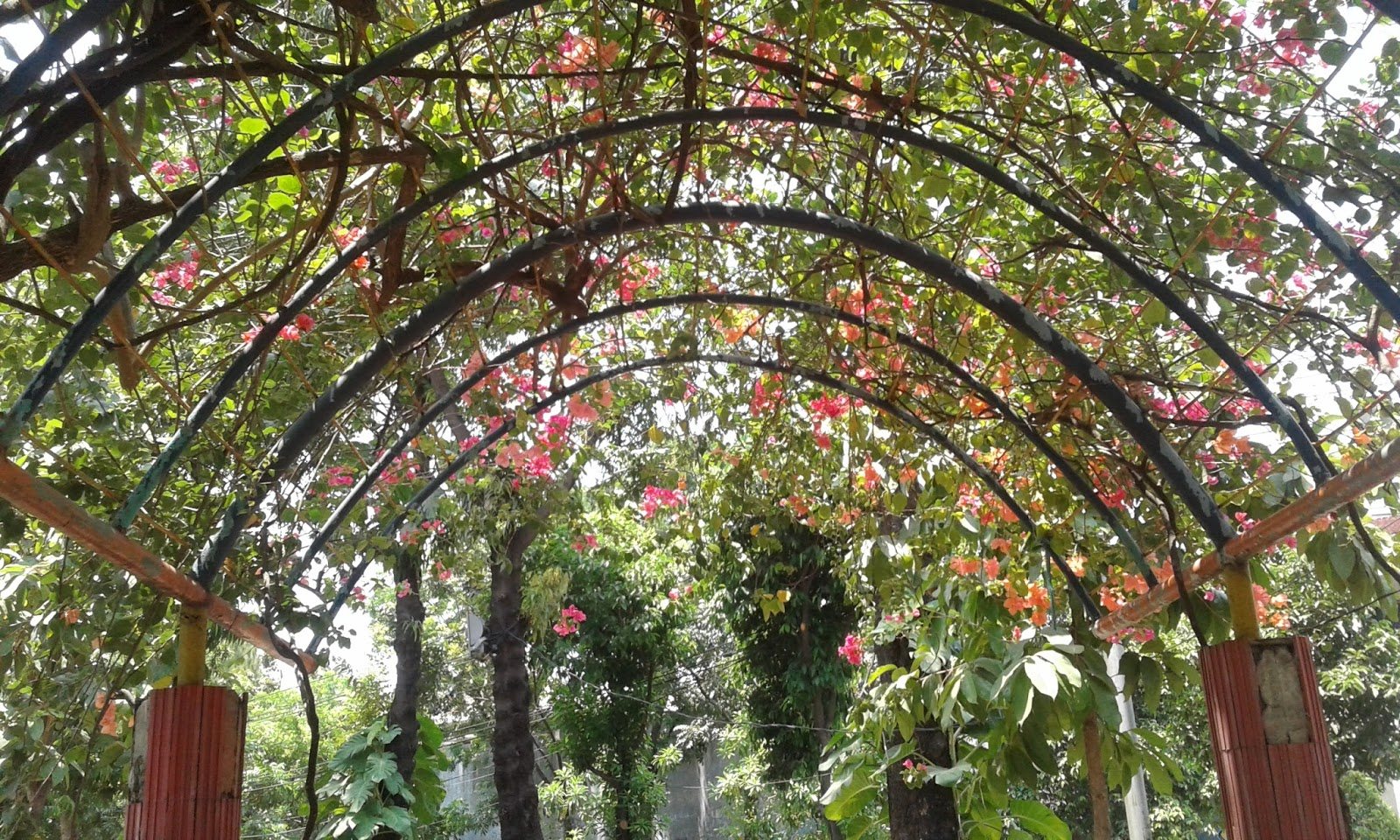 Hmmm Cantiknya Taman Prestasi Surabaya Catatan Harian Qc Inspector Kota