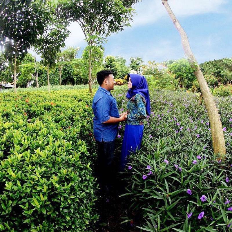 19 Tempat Wisata Alam Tersembunyi Sekitar Surabaya Jarang Hutam Bambu