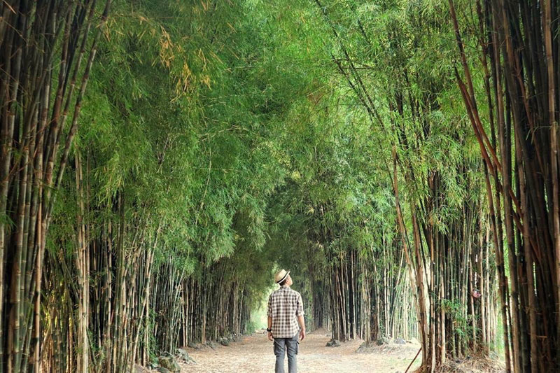 19 Tempat Wisata Alam Tersembunyi Sekitar Surabaya Jarang Salah Satu