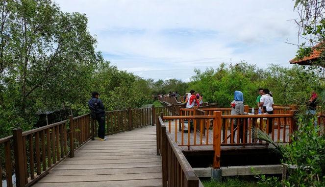 Desember 2015 Soerabaja Anyar Mangrove Taman Sakura Keputih Kota Surabaya