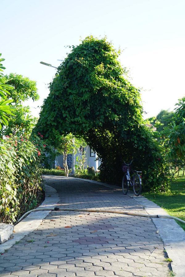 Hutan Bambu Keputih Taman Sakura Surabaya Rek Kota