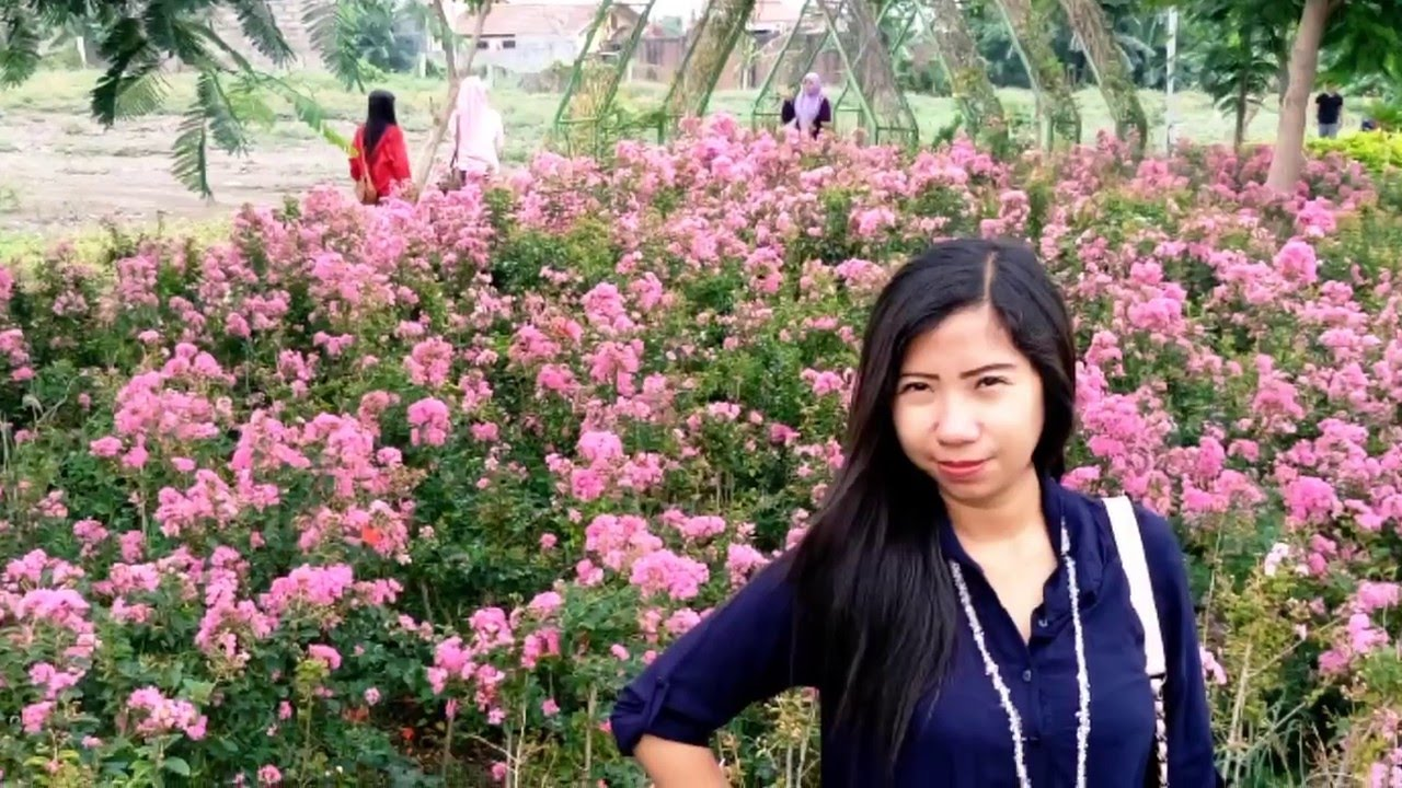 Hutan Bambu Taman Harmoni Keputih Surabaya Youtube Sakura Kota