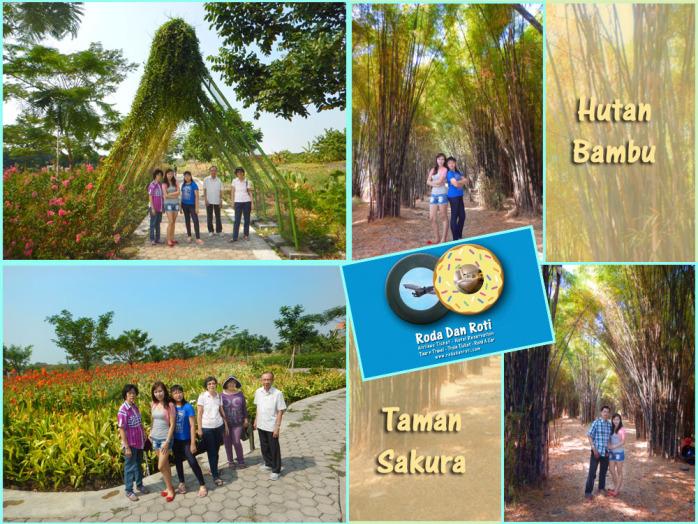 Hutan Bambu Taman Sakura Keputih Sukolilo Surabaya Klik Semenjak Kota