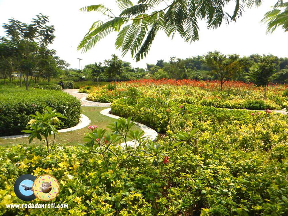 Hutan Bambu Taman Sakura Keputih Sukolilo Surabaya Roda Roti Kota