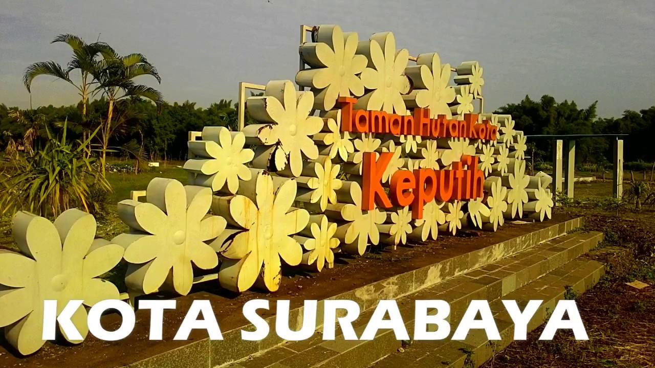 Hutan Kota Keputih Wisata Surabaya Youtube Taman Sakura