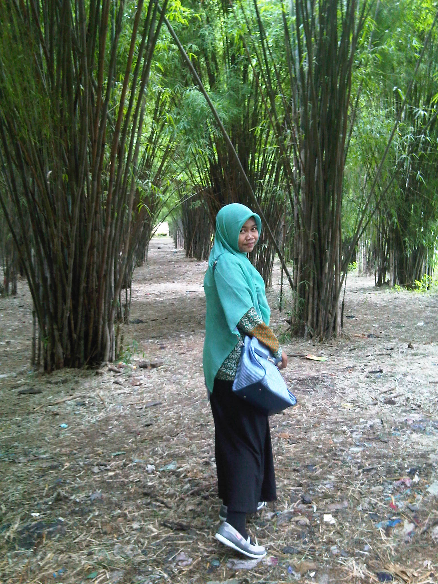 Love Share Melancholist Hutan Bambu Keputih Surabaya Taman Sakura Kota
