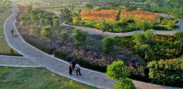 Taman Harmoni Keputih Surabaya Alternatif Habiskan Akhir Pekan Fasilitas Sakura