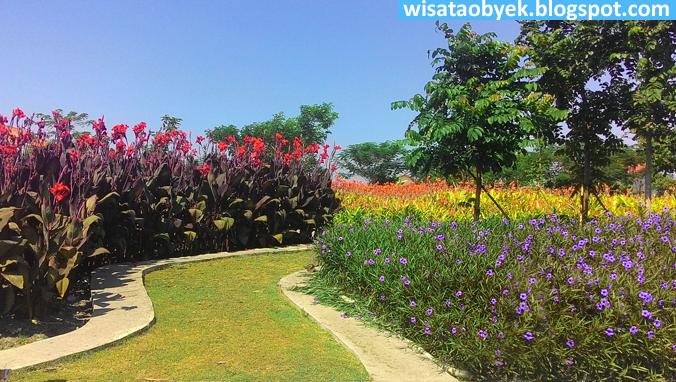 Taman Harmoni Keputih Surabaya Wisata Obyek Indonesia Sakura Kota