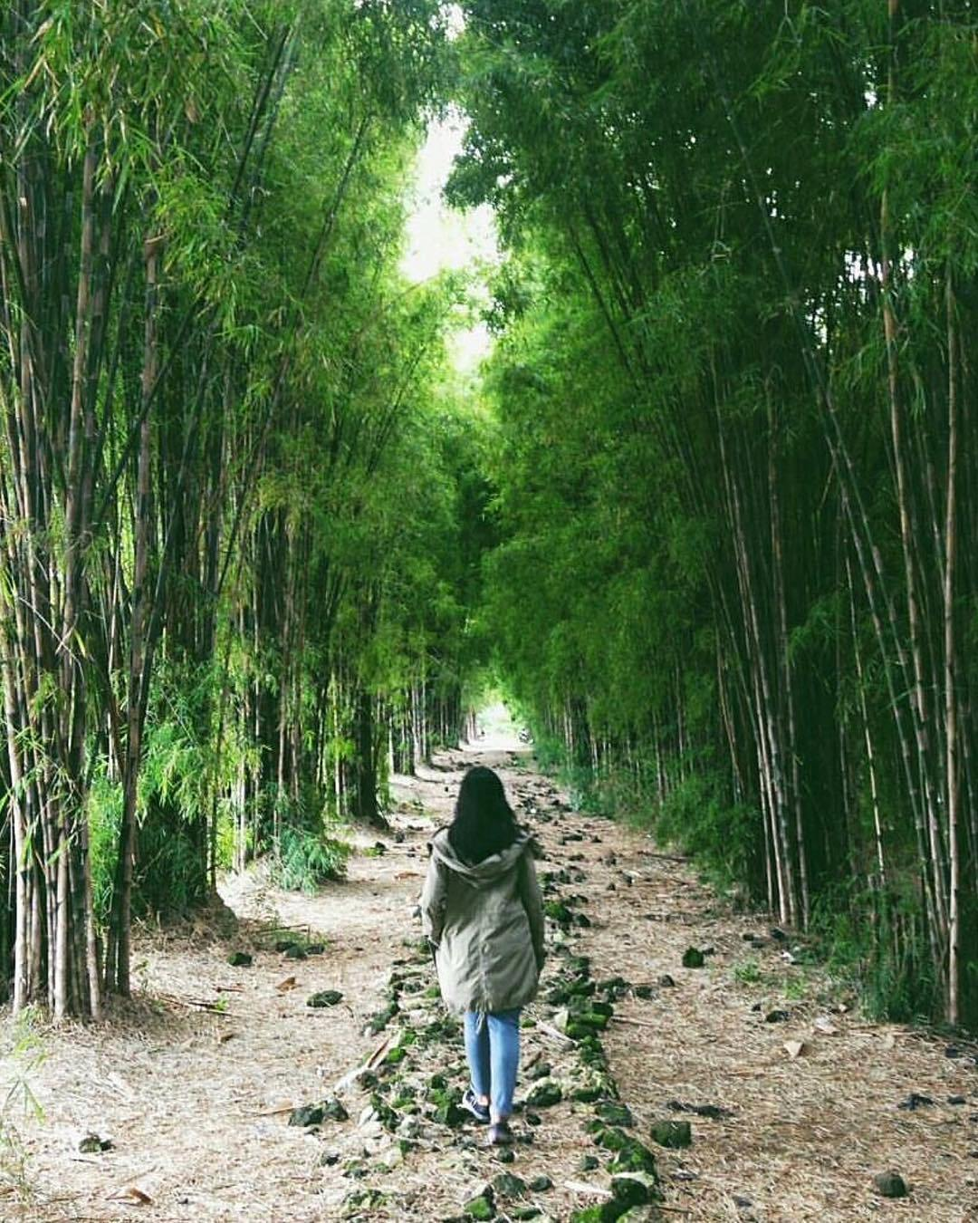 Taman Sakura Keputih Surabaya Harmoni Kota