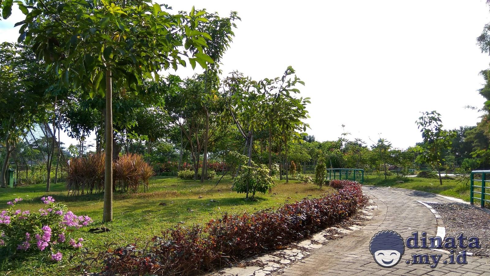 Taman Sakura Keputih Surabaya Pinggiran Timur Bagian Lain Kota