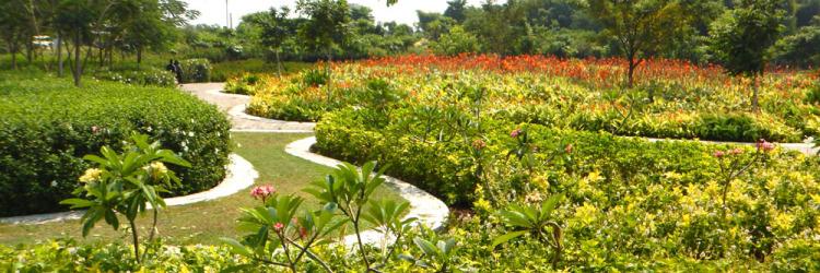 Taman Sakura Metropolis City Spot Keputih Kota Surabaya