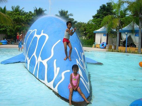 Kolam Renang Laut Picture Ciputra Waterpark Surabaya Tripadvisor Wisata Kota