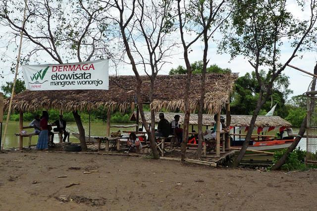 Eko Wisata Mangrove Wonorejo Surabaya Lokasi Terbaru Mendapatkan Info Mengenai