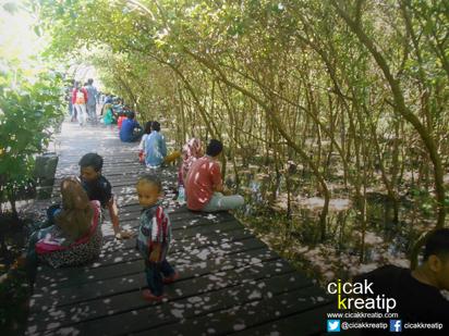 Kembali Berwisata Hutan Mangrove Wonorejo Surabaya Asri Surabaya2 Wisata Kota