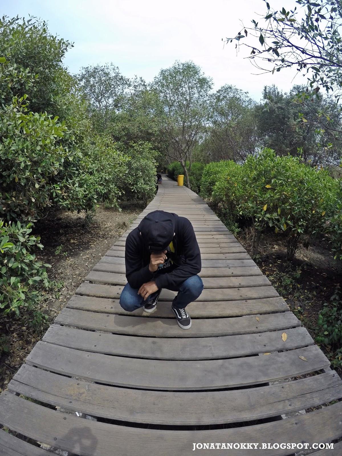 Menikmati Hijaunya Hutan Mangrove Kota Metropolitan Jonatan Okky Sebagai Kedua