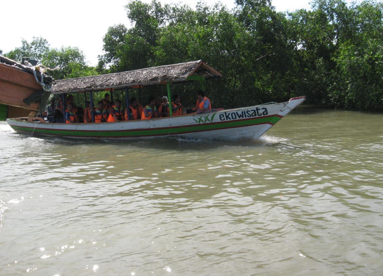 Menikmati Rimbunnya Hutan Mengrove Wonorejo Surabaya Wisata Jatim Perahu Mangrove