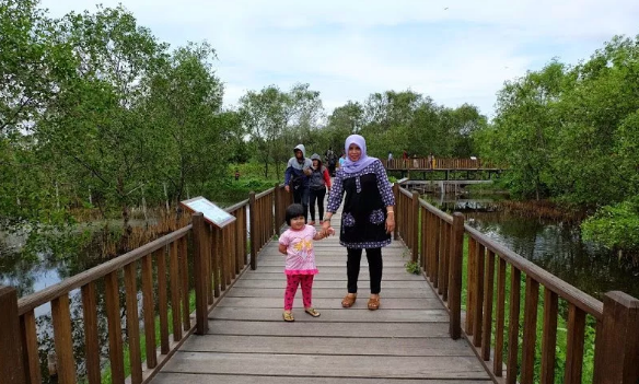 Ragam Tempat Wisata Kekinian Bisa Kunjungi Surabaya Hutan Mangrove Wonorejo