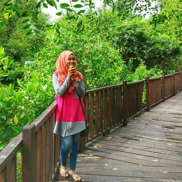 Tempat Wisata Mangrove Wonorejo Rame Informasi Foto Hutan Surabaya Rungkut