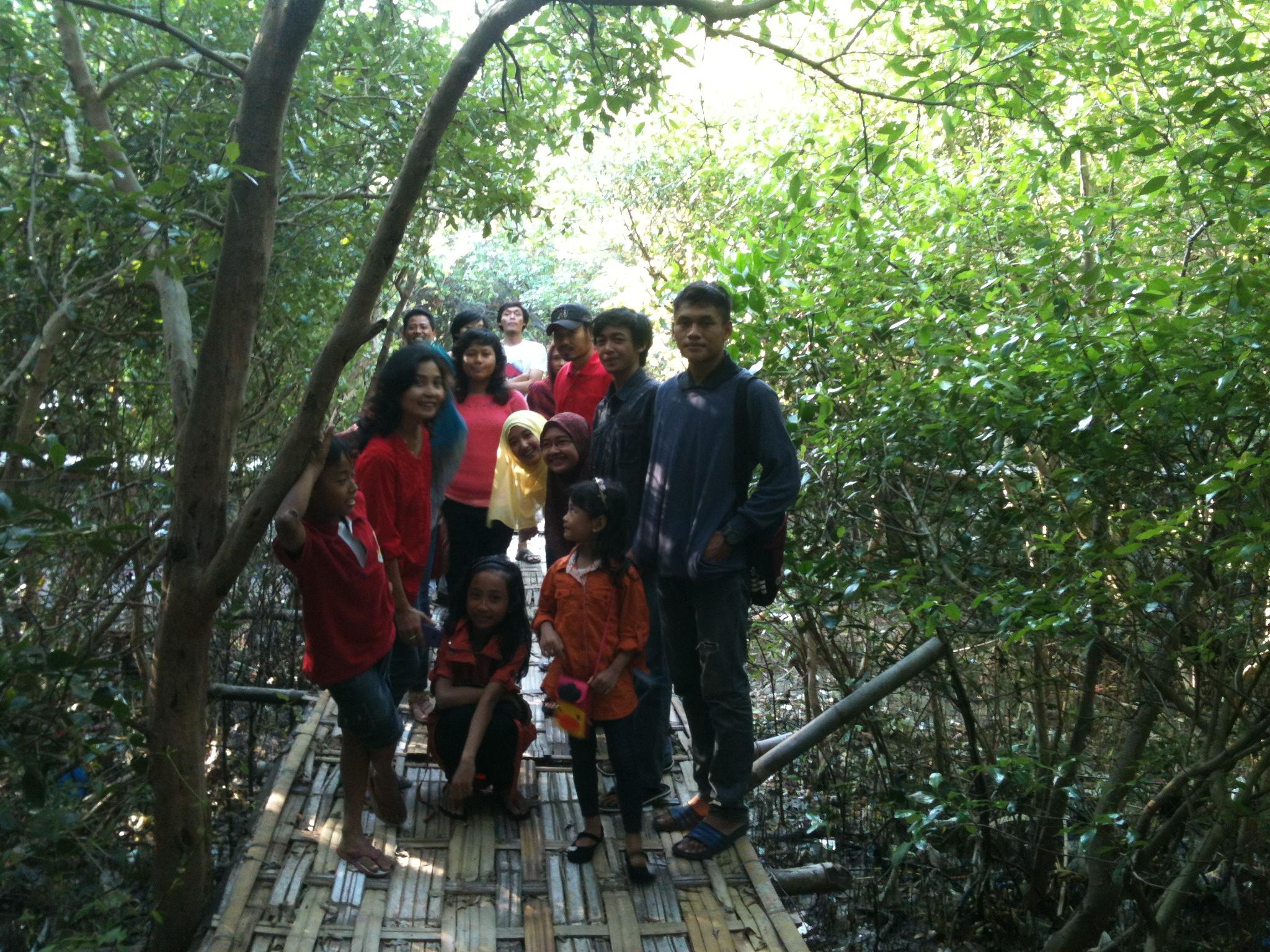 Tourism Ekowisata Mangrove Wonorejo Rungkut Maskakank Blog Suasana Hutan Bakau