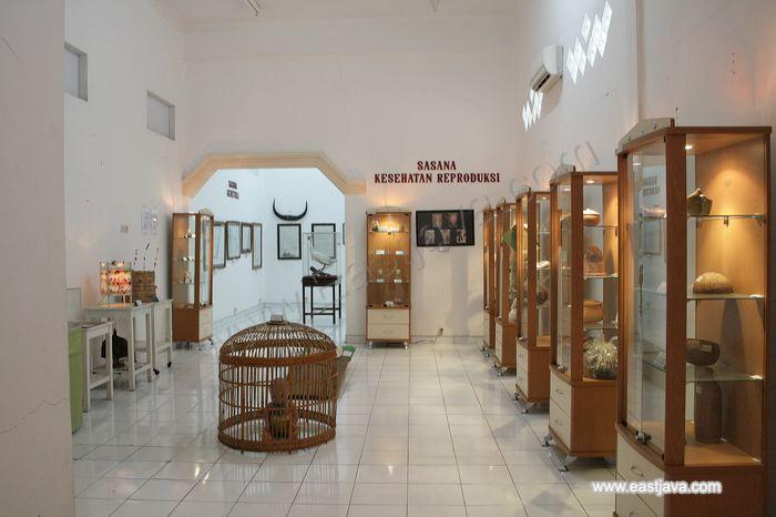 Health Museum Dr Adhyatma Mph Surabaya East Java Save Wisata