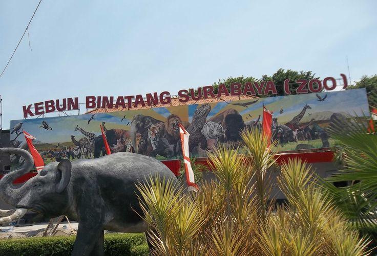 Rumah Batik Jawa Timur Jadi Pilihan Tempat Wisata Menarik Kota