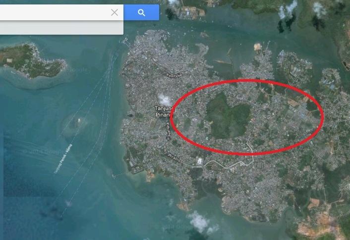 Hutan Cinta Misterius Tanjung Pinang Oleh Mustafa Kamal Bukit Kursi