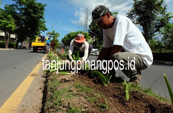 Pemko Incar Adipura Kirana Tanjungpinang Pos Taman Batu 10 Kota