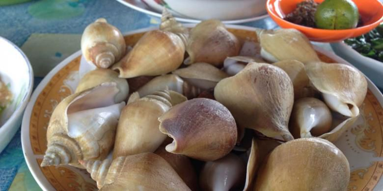 Serbi Gonggong Simbol Tanjungpinang Tak Sekadar Kuliner Bintan Kepulauan Riau