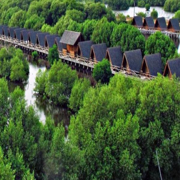 10 Tempat Wisata Tarakan Indah Populer Lihat Id Hutan Mangrove