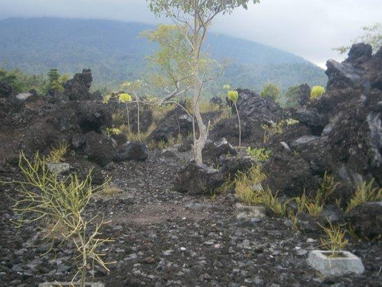 Batu Angus Burnt Rocks Picture Ternate Kota