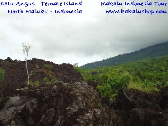 Paket Wisata Snorkeling Pantai Sulamadaha Tour Ternate Maluku Obyek Batu