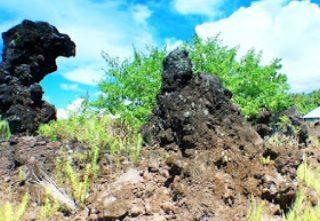 Rute Taman Wisata Alam Batu Angus Cagar Duasudara Kota Bitung
