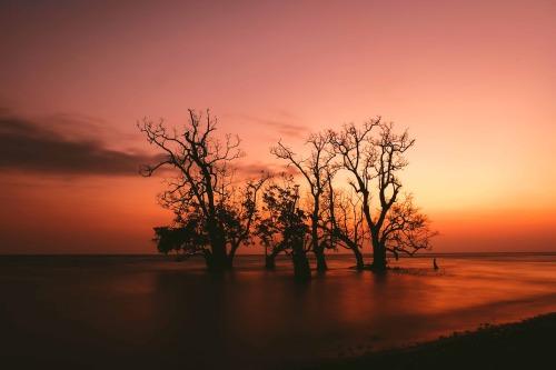 Gema Drakel El Magnifico Ternate Postgraduationtrip Beaches Sunset Perfect Day