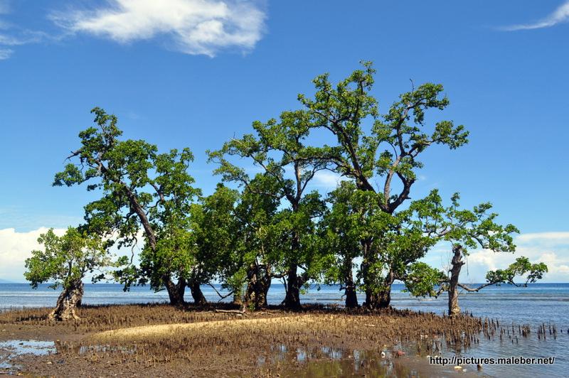 Pantai Kastela Ternate Maluku Utara Gunawan Ip Flickr Maleber Net