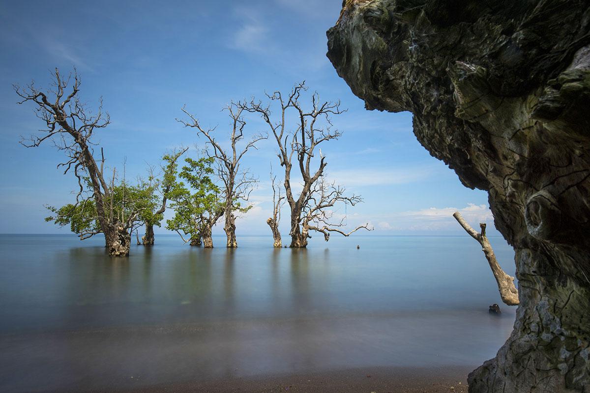 Perjalanan Negeri Sultan Kaya Rempah Sejarah Ternate Setibanya Disana Pantai